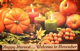 november harvest